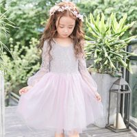 children's princess dress lace spring and autumn girls skirt mesh tutu dress show costumes